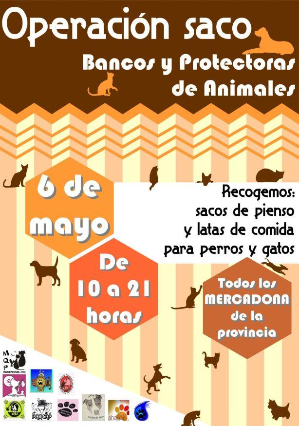 cartel 6 de mayo